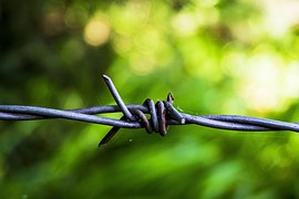 barbed-wire-819010__180