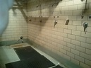 shower1(1)